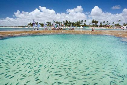 Aruba03